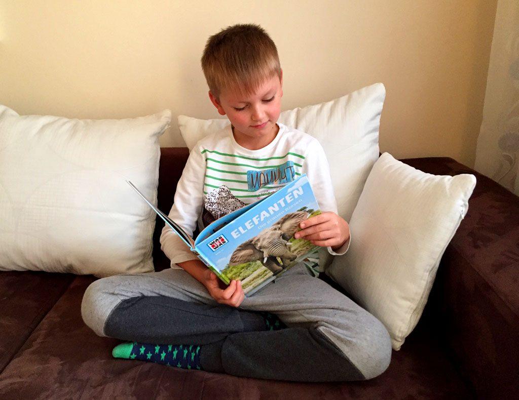 """Der Junge liest das Buch """"Elefanten""""."""