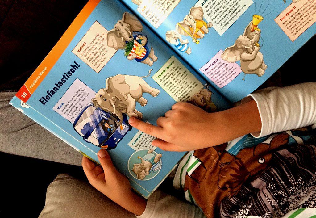 Zeigt die gezeichneten Bilder des Buches.