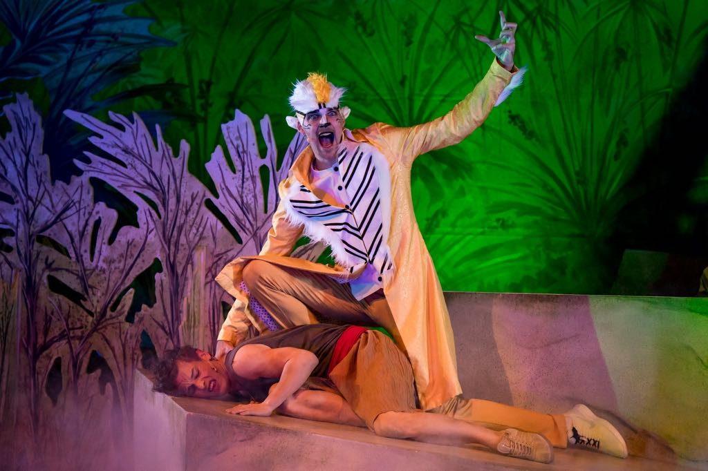 Dschungelbuch - Mogli und der Shir Khan