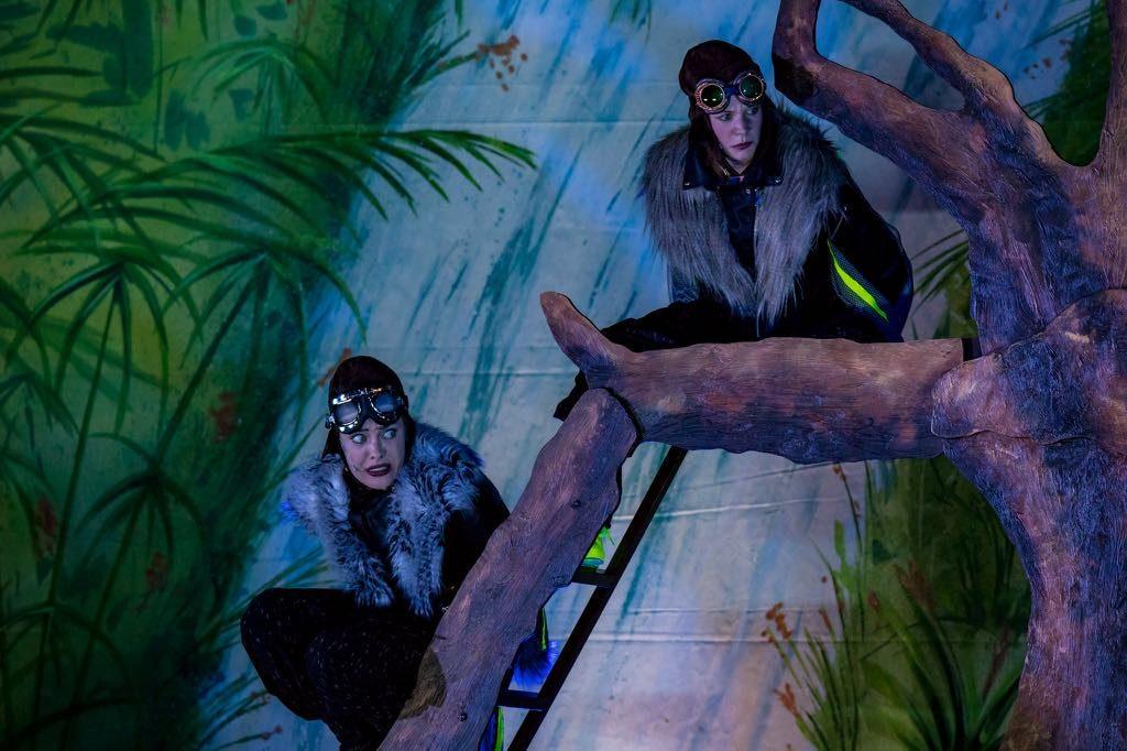 Dschungelbuch - die Geier