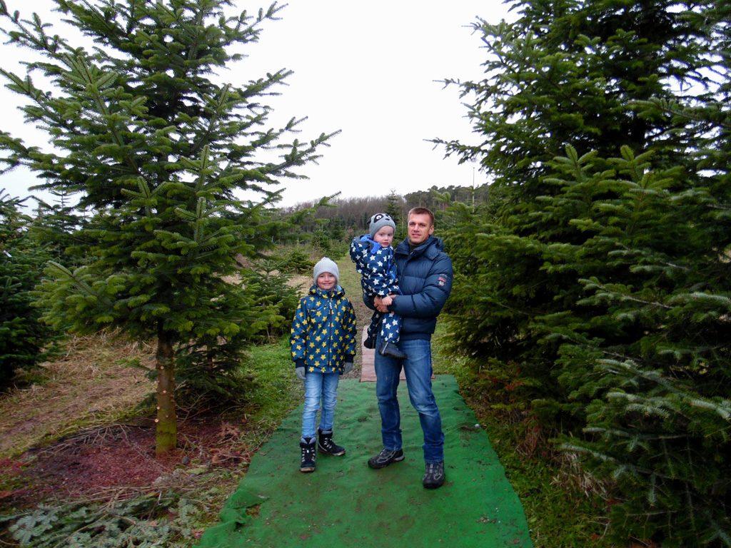 Papa und seine zwei Jungs stehen zwischen den Bäumen