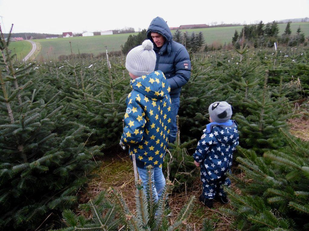 Die Familie berät sich, welcher Baum genommen wird