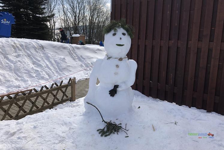 Am Fichtelberg Der Schneemann
