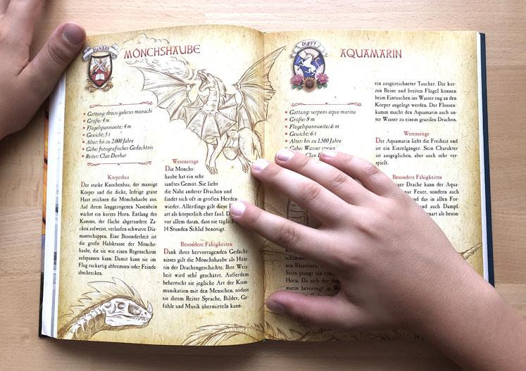 Die geheime Drachenschule Buch im Buch