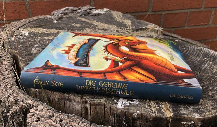 Die geheime Drachenschule Das Buch