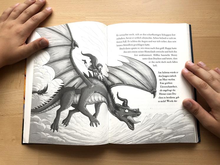 Die geheime Drachenschule Tolle Illustrationen