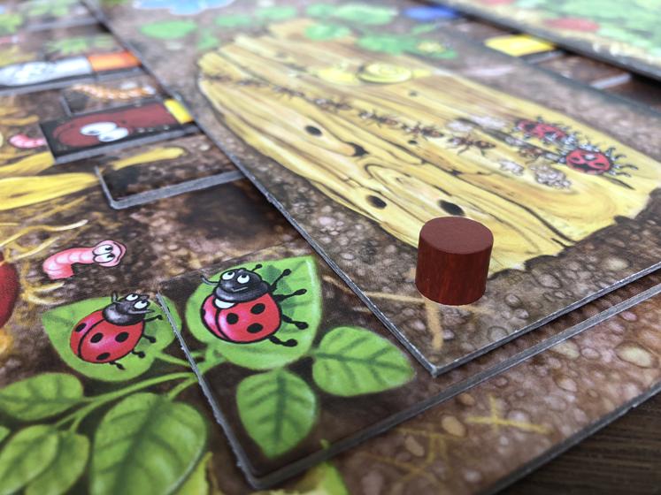 Spiele für den Herbst - tolle Details - Da ist der Wurm drin